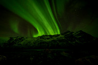 006 The aurora borealis (northern lights)  © Bob Riach