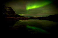 015 The aurora borealis (northern lights)  © Bob Riach