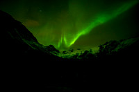 017 The aurora borealis (northern lights)  © Bob Riach