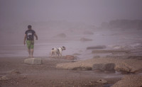 One man and his dog at Spurn Point in the fog taken by Bob Riach